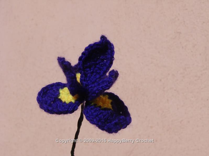 Iris Flower Happyberry